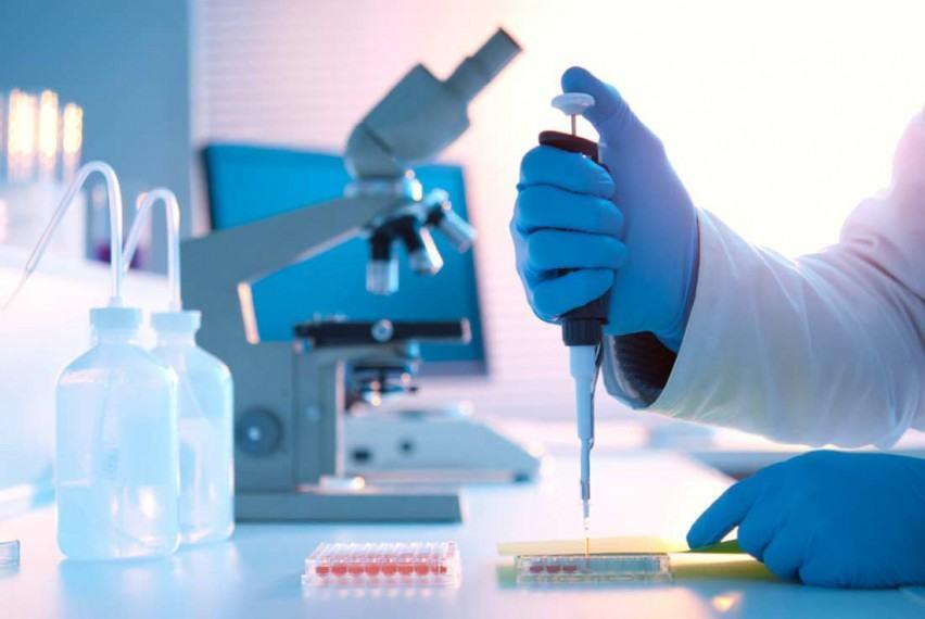 Лабораторная диагностика в клинике «LeVita»